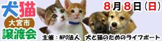 8月8日日曜日に大宮市で犬と猫の譲渡会開催